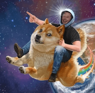 Dogecoin Does Not Compete With Bitcoin