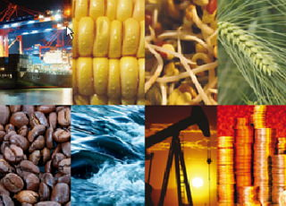 Trading Commodities And Understanding Price Inflation