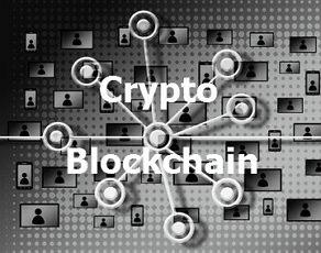 Understanding Crypto Popularity